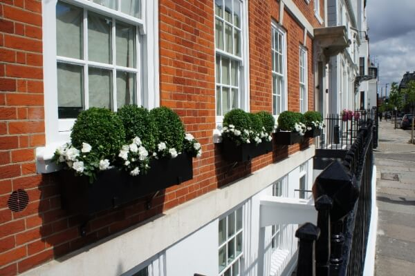 Window boxes Marylebone