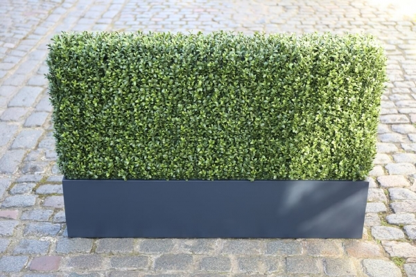 Plywood WB Grey Artificial Hedge H40cm