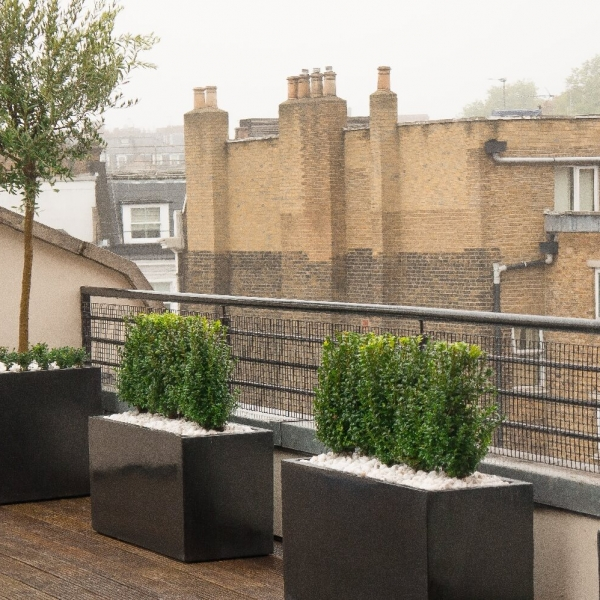 Roof terrace polystone planters