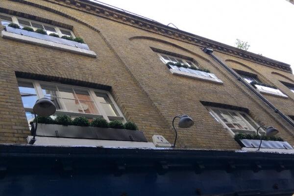 Window boxes with Buxus balls