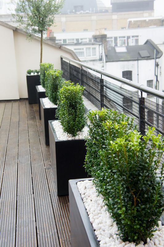 We can create anything from a simple screened area to a complex roof terrace  project.