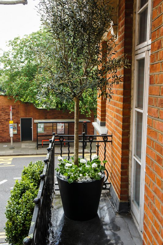Roof terrace design roof terrace planters outdoor for Terrace plants