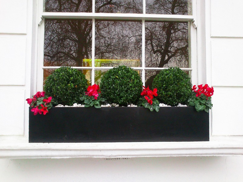 Window boxes london design installation maintenance for Window design box