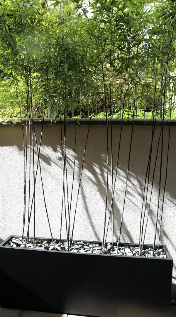 Bespoke metal planters bamboo